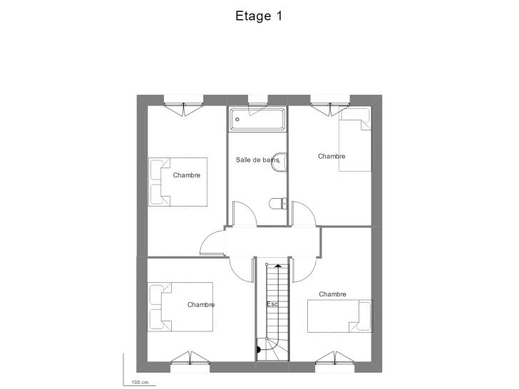 plan maison r+1 en l