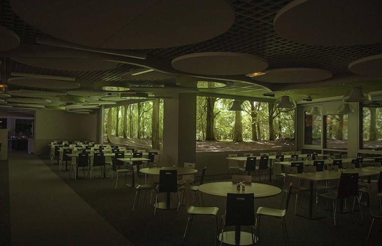 Arborescence - Solaris