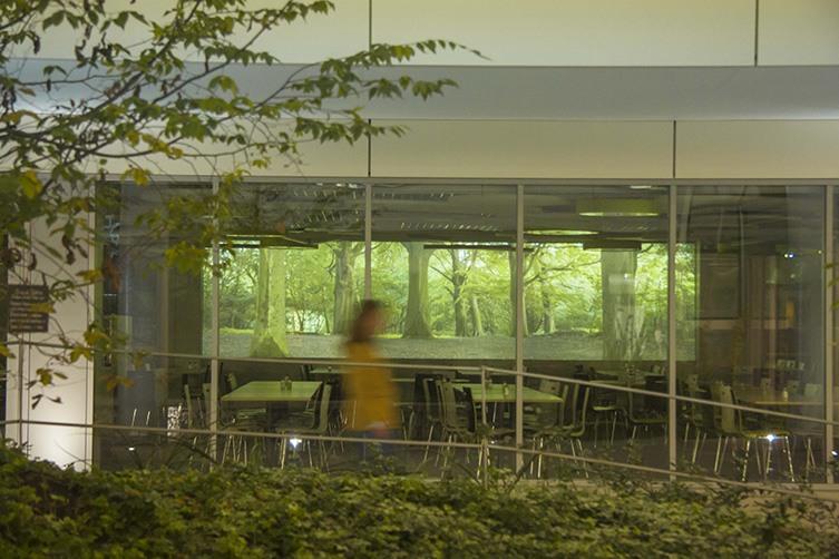 Arborescence par Atelier Parametre- immeuble Solaris