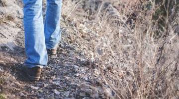 Acheter un terrain : quelles sont les étapes à suivre ?