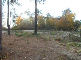 Vente terrain 1000 m²