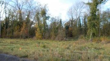 Vente terrain 12400 m²