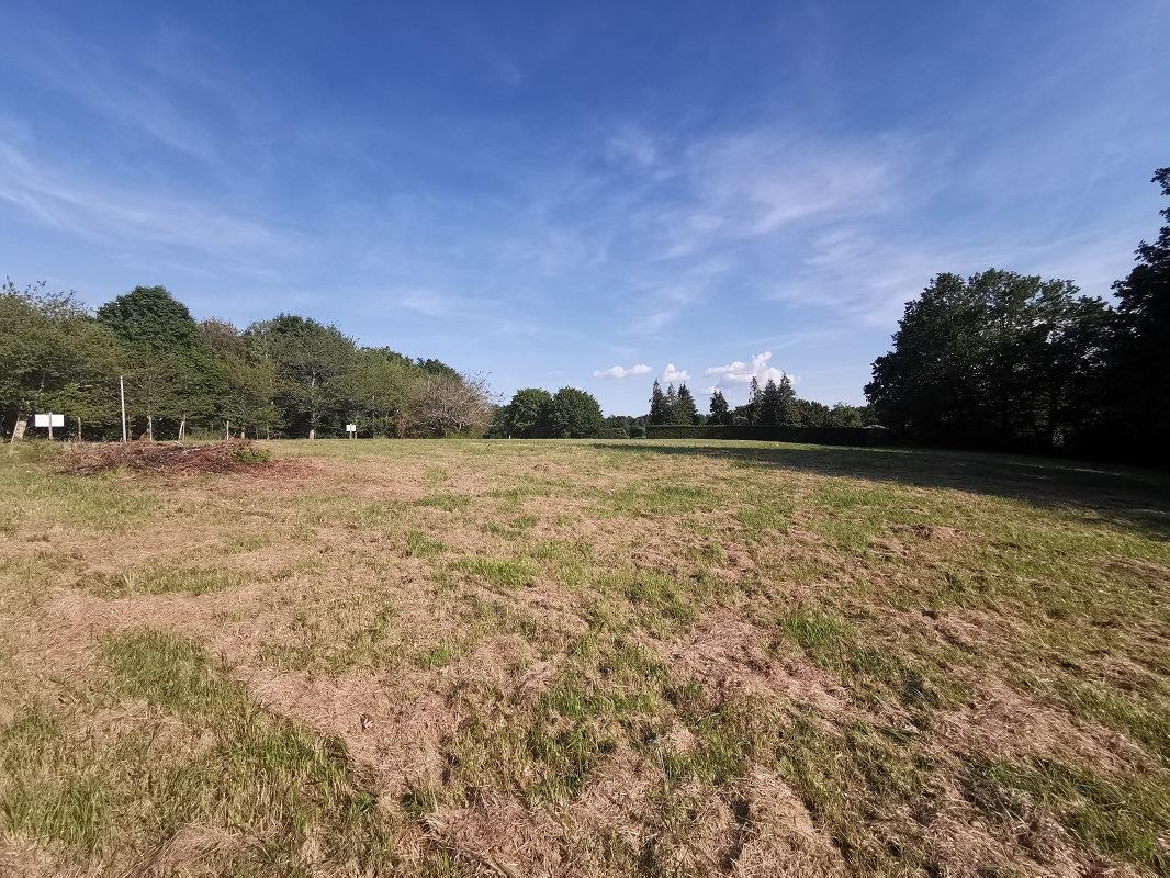 Terrain à construire sur Siorac-en-Périgord (24170) de 2013m²