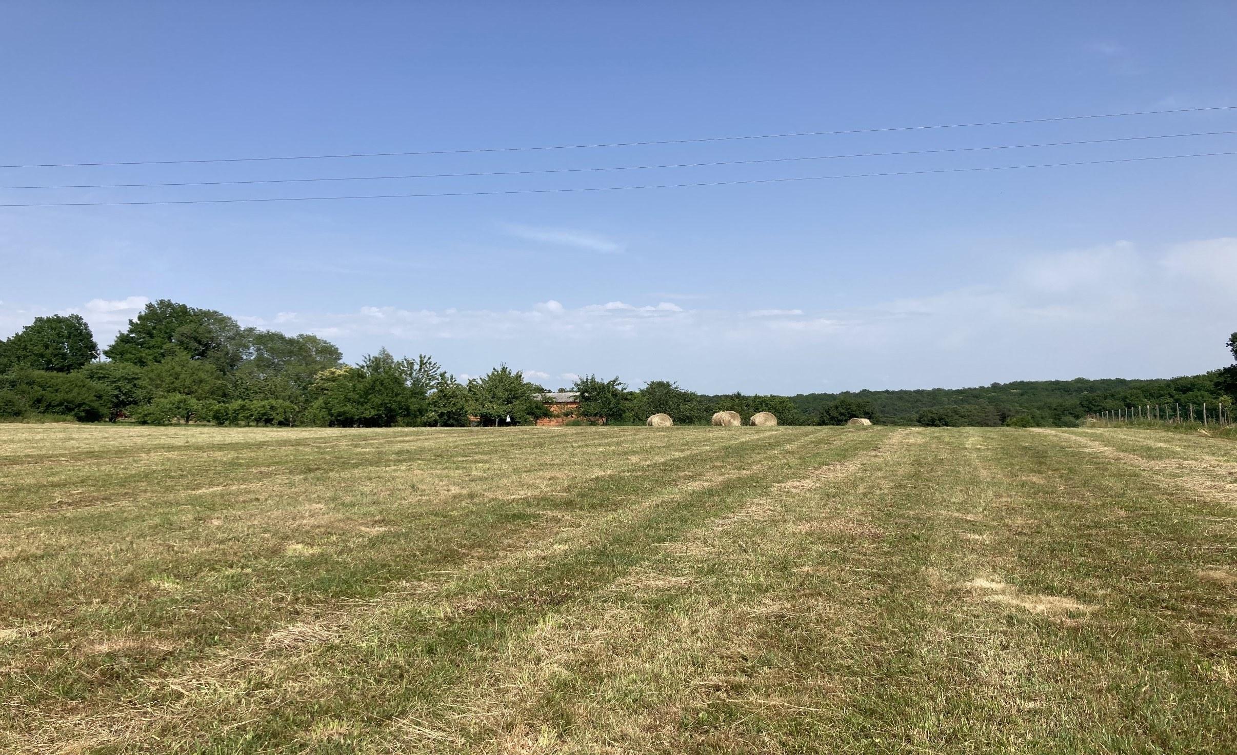 Terrain à construire sur Couze-et-Saint-Front (24150) de 3876m²