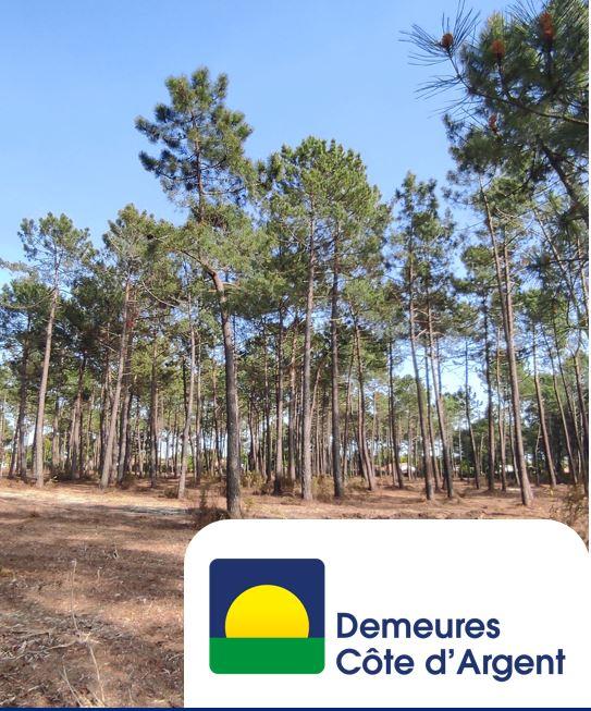 Maison et terrain constructible à Andernos-les-Bains